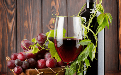 Ever Wondered About Wine?